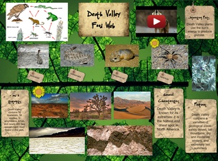 Death Valley - Food Web