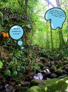 The Rainforest's thumbnail