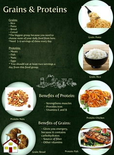 Grains and Proteins