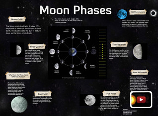 Melinda Moon Phases Period 2
