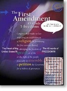 tHE 1ST AMENDMENT's thumbnail