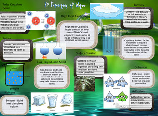 10 Properties Of Water