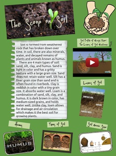 The Scoop on Soil