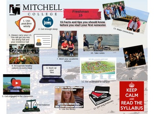 15 Mitchell Facts for First Year Students