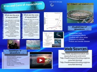 Pros and cons of marine aquaculture