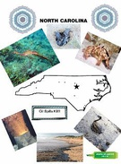 No Drilling in NC!'s thumbnail
