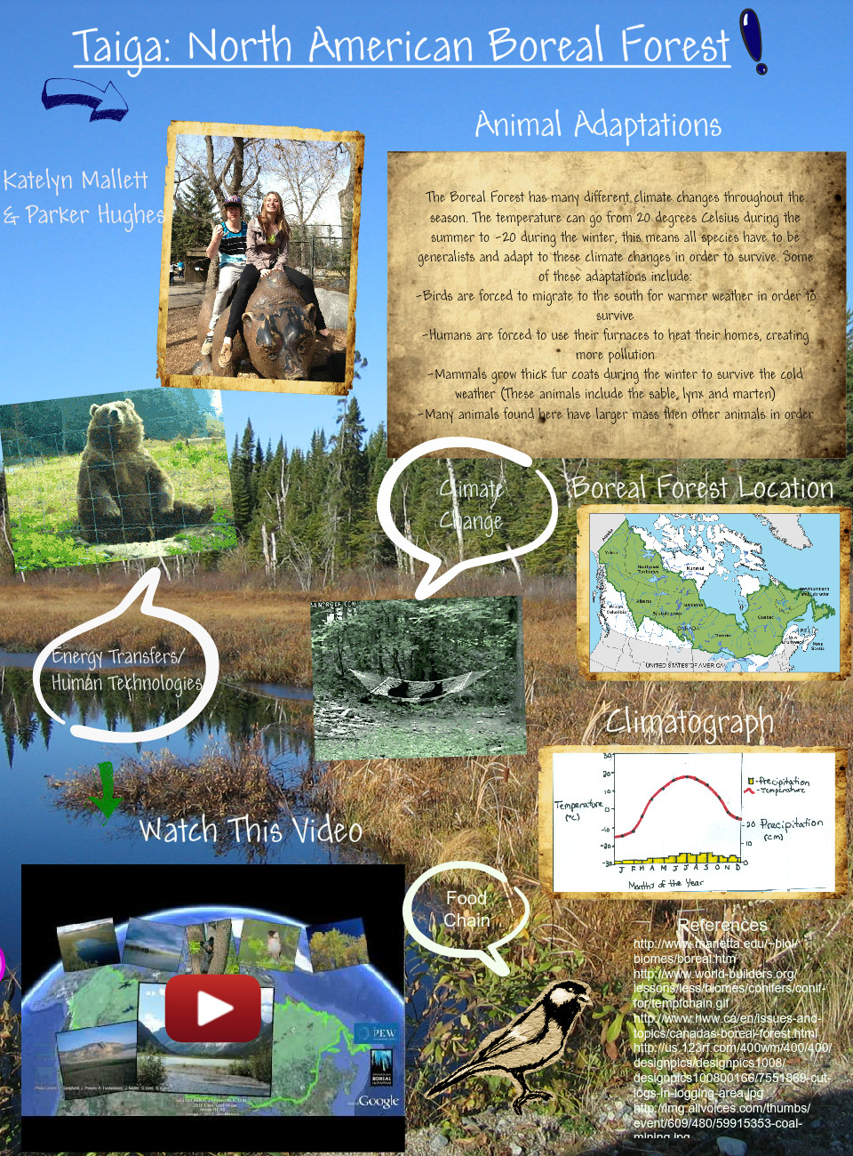 North American Boreal Forest