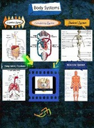 Body System's thumbnail