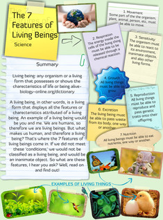 The 7 Features of Living Beings