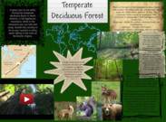 Temperate Deciduous Forest's thumbnail
