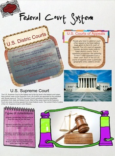 MODULE 6 (Federal Court System)