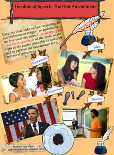 Freedom of Speech: American Government Collage