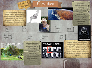 Evolution- last one everyone