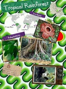 Tropical Rainforest's thumbnail
