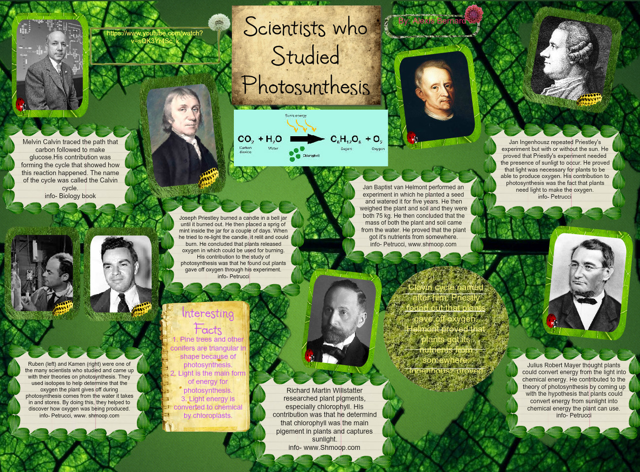 Scientists who Studied Photosynthesis