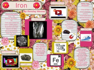 Iron Project